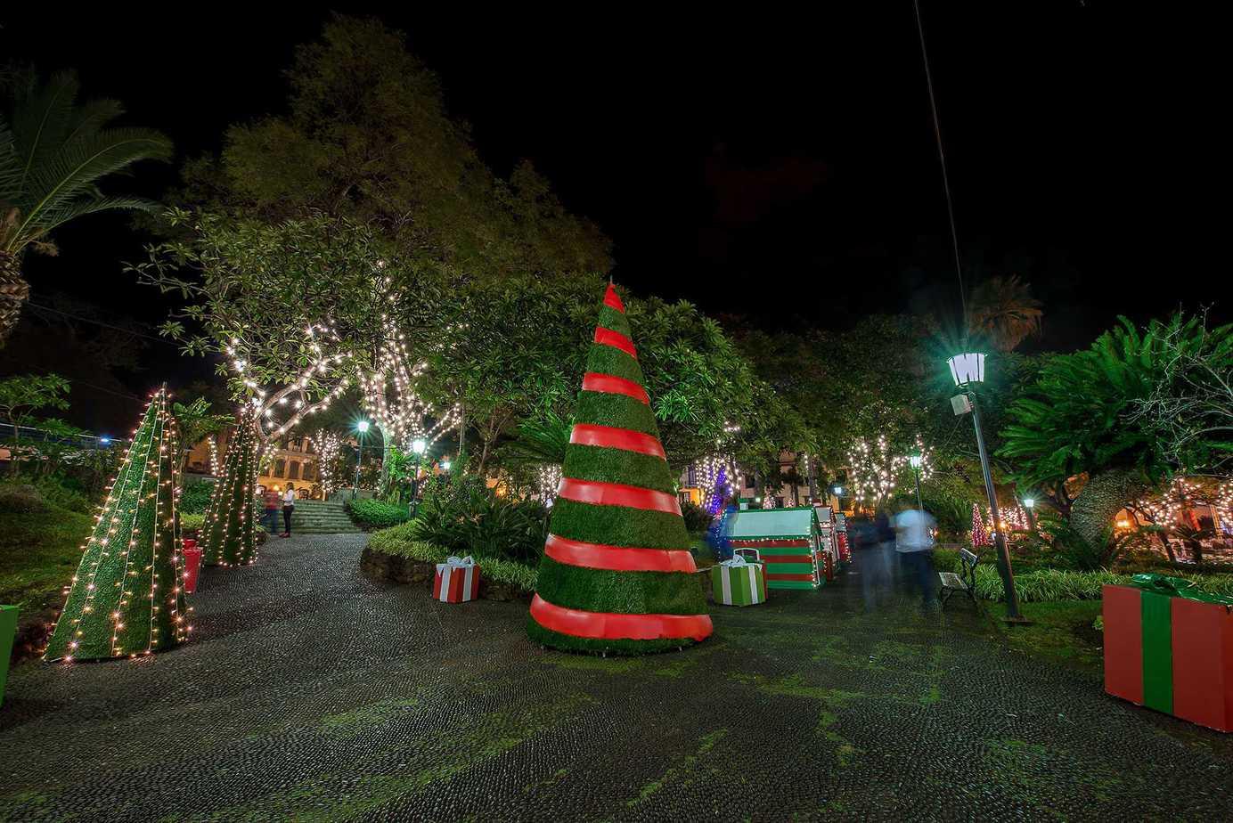 Christmas Decorations & children's train Praca Do Municipio Funchal