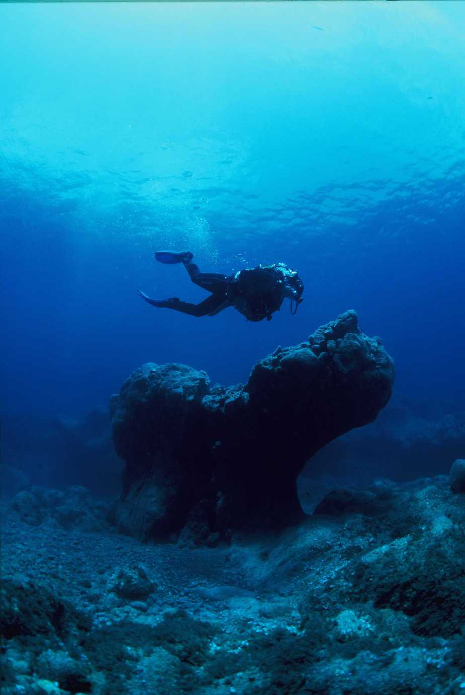 Scuba diving Garajau