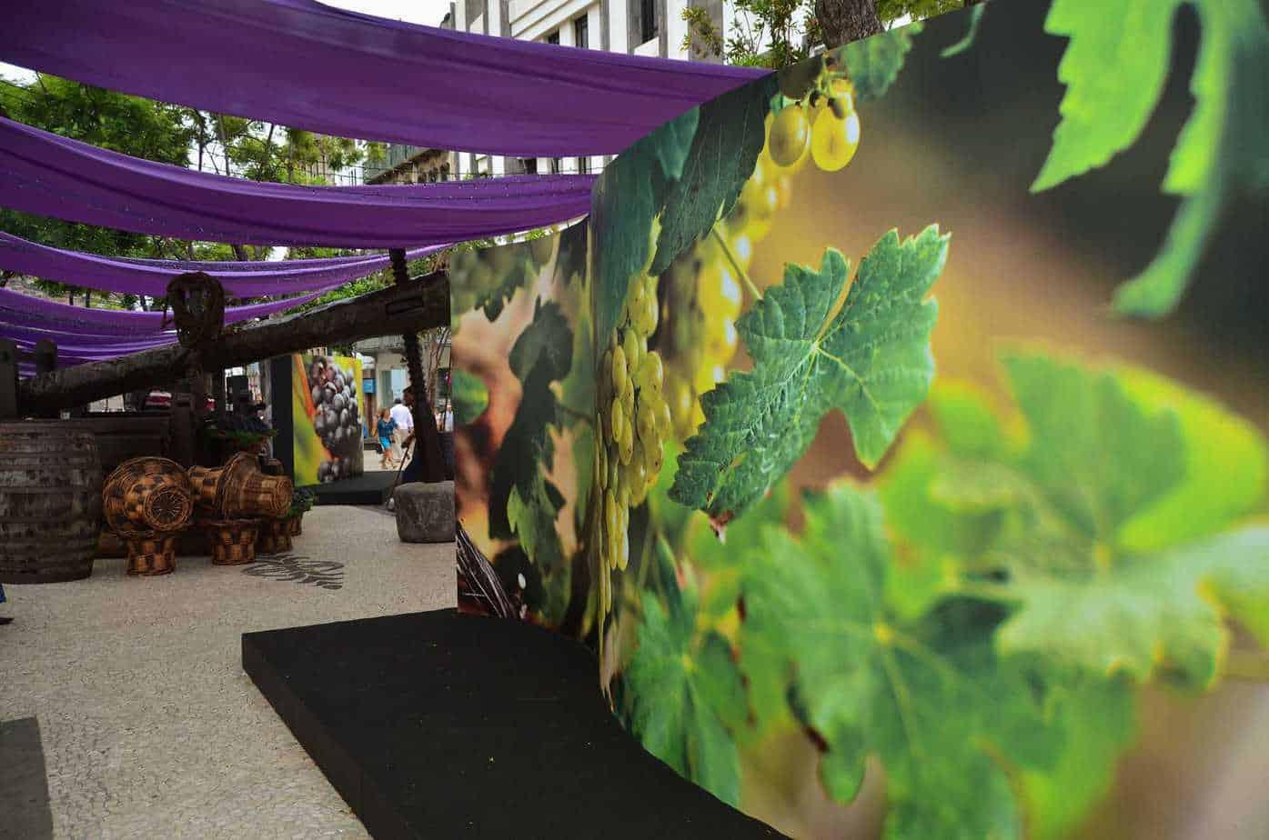 Wine show - Funchal
